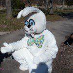 Bunny at Krape Park